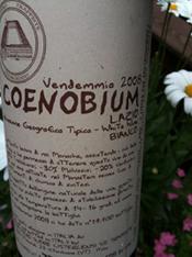 coenobium