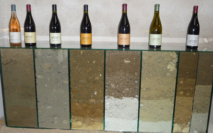 domaine baudry soil