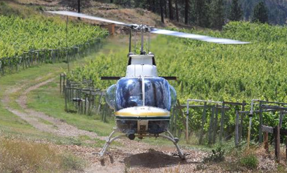 helicopter vineyard