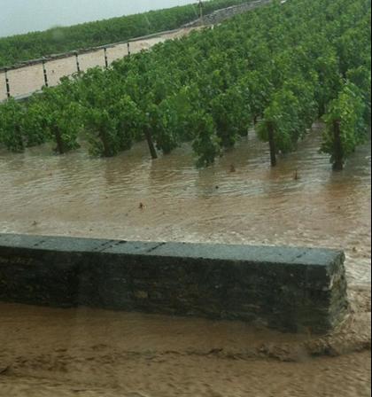 volnay_flooding