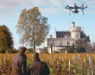 drone vineyard