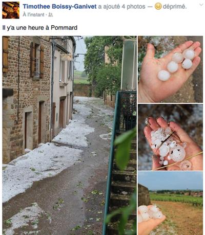 hail_burgundy